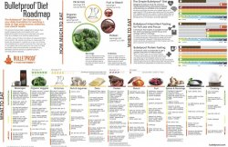 Bulletproof Food Roadmap